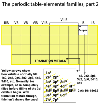 Periodic table organization, elemental families, transition metals